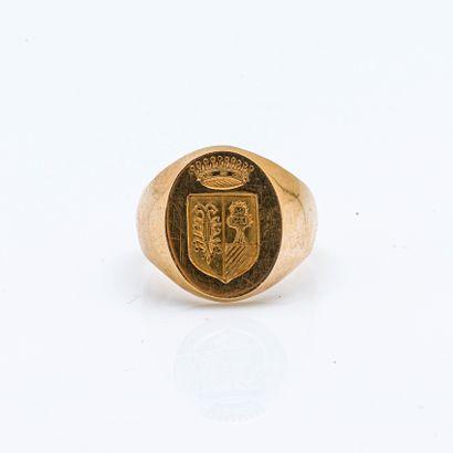 Chevalière en or jaune 18 carats (750 millièmes)...