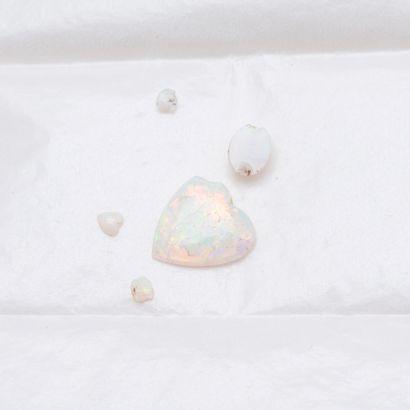 Lot d'opales sur papier, dont une en forme...