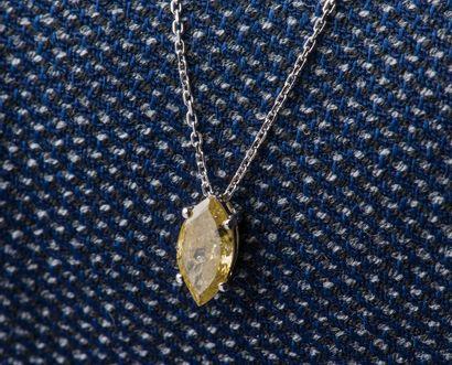 Chaîne et pendentif en or gris 18 carats...