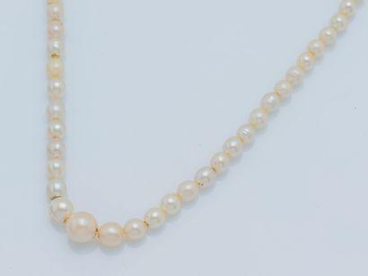 Collier d'un rang de perles irrégulières...
