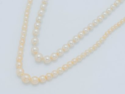 Collier d'un rang de perles de culture en...