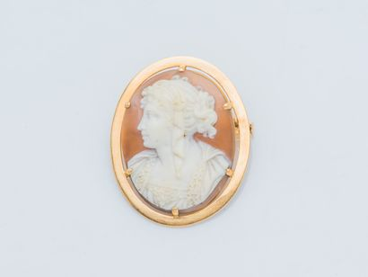 Broche ovale en or jaune 18 carats (750 ‰)...