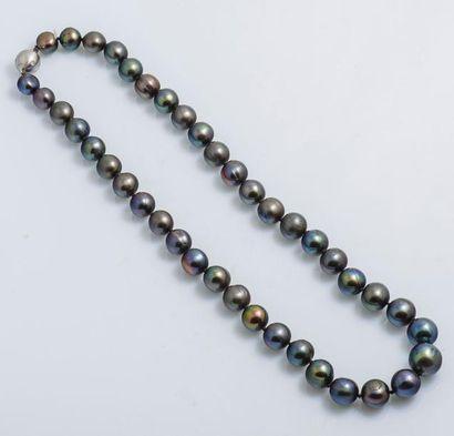 Collier ras de cou de perles de culture grises...