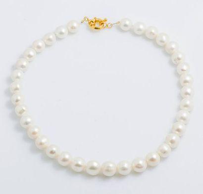 Collier de perles de culture choker d'environ...