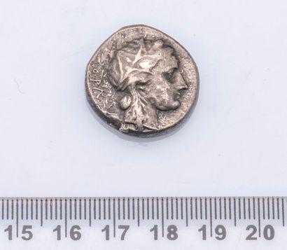 MONNAIE GRECQUE SICILE : Syracuse : Agathoclès (317 – 289 avant J.C.)