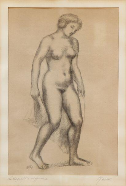 ARISTIDE MAILLOL (1861-1944)  Femme nue debout...
