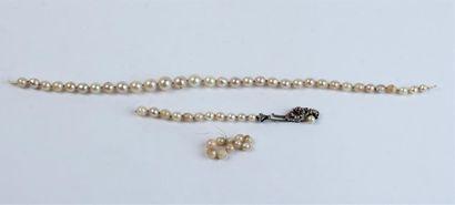 COLLIER composé d'un rang de perles de cultures...