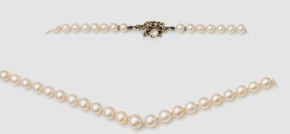 COLLIER choker composé d'un rang de perles...