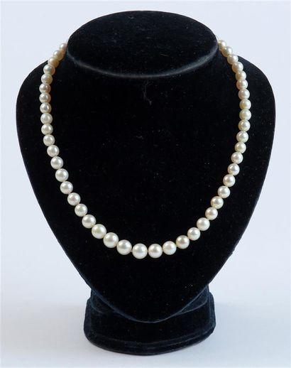 COLLIER de perles en chute, le fermoir navette...