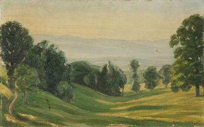 FRANÇOIS ANGELI (1890 - 1974) Paysage d'Auvergne...