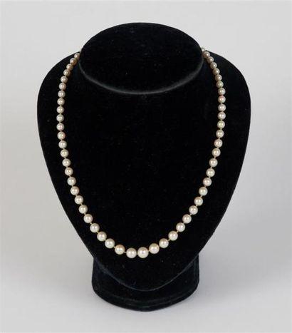 COLLIER composé d'un rang de perles en chute, fermoir serti de trois pierres vertes...