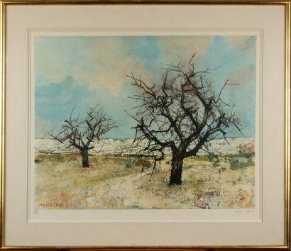 MICHEL CIRY (1919) Paysage aux arbres Lithographie,...
