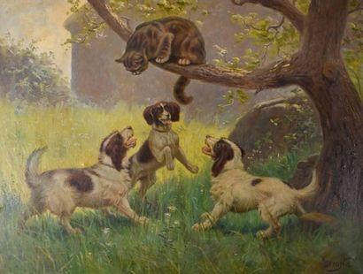 Claudius SEIGNOL (1858-1926) Pauvre chat...