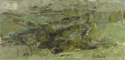 Georges ADILON (1928-2009) La plaine de Brindas,...