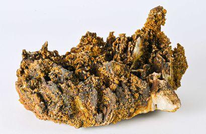 TRES GROSSE PYROMORPHITE BARYTINE LES FARGES CORREZE (25cm)