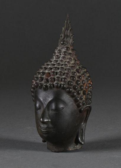 THAILANDE, Alyutaya - XIXe siècle  Tête de bouddha, le visage serein, les oreilles...