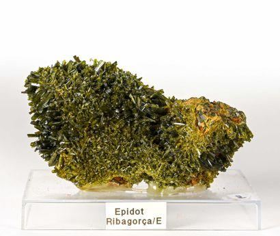 EPIDOTE RIBAGORCE Espagne (8cm)