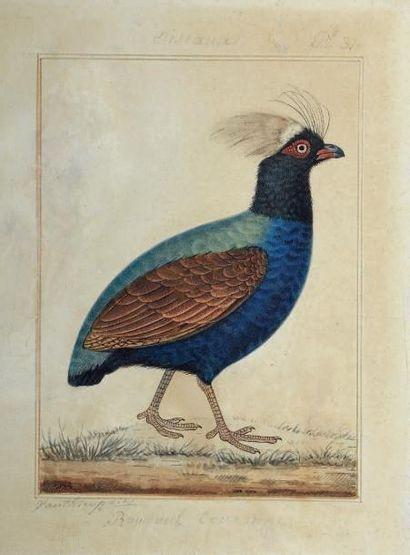 Antoine Charles VAUTHIER (1790-1879)