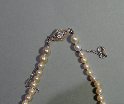 Collier de perles de culture en chute, le...