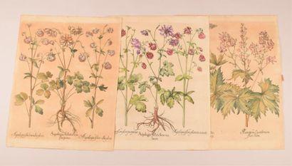 Un fort lot d'estampes anciennes et modernes par ou d'après N. de Bruÿn, Callot,...