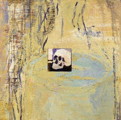 Denis SERRE (né en 1953) Vanité au crane...
