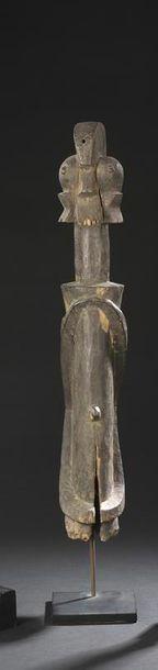 Buste Wurkun, kundul Nigeria, Région de Muri...