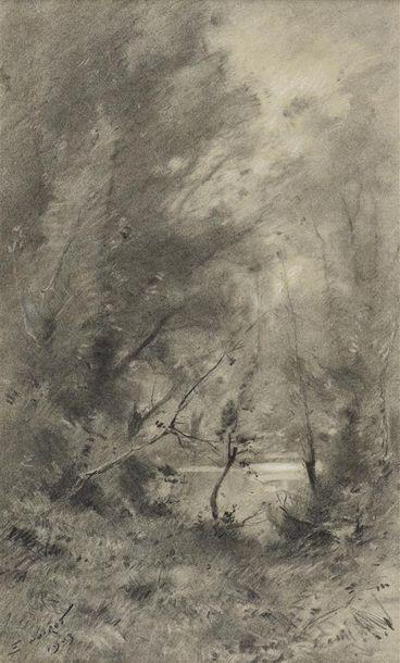 Émile NOIROT (1853-1924) Bord de rivière Fusain, signé en bas à gauche daté 1903....