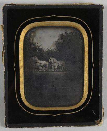Ambrotype, vers 1860 Rare épreuve représentant...