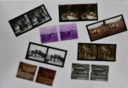 Stéréoscopie sur verre, images choisies de...