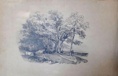 Rosine MICHEL (XIXe siècle)
