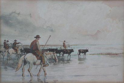 Édouard DOIGNEAU (1865-1954) attribué à...
