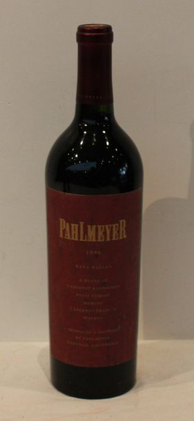1 bout PAHLMEYER 1996 95/100