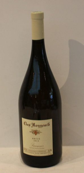 1 mag SAUMUR CHAMPIGNY BREZE CLOS ROUGEARD BLANC 2014