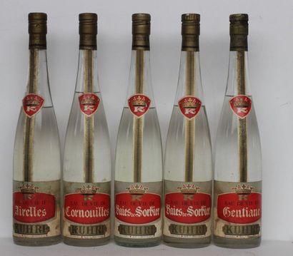 5 bout ALCOOLS DIVERS : SORBIER, CORNOUILLES,...