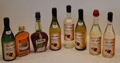 8 bout 6 ALCOOLS DE PRUNE 1966, 1 LIQUEUR...
