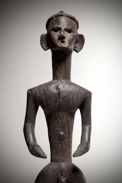 ANGAS / MONTOL (Nigéria)  Exceptionnelle STATUE masculine en bois ligneux. Le visage...