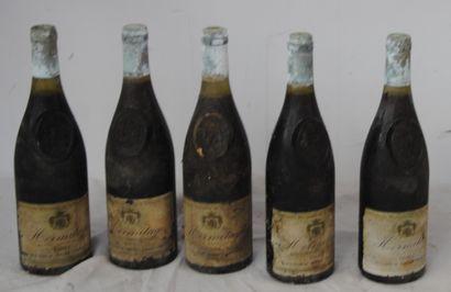 5 bout HERMITAGE DELAS 1981 (étiquettes sales,...