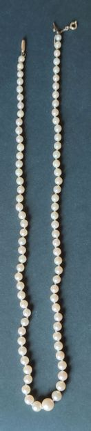 NECKLACE of degressive cultured pearls,...
