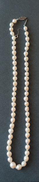 COLLIER de perles de culture dégressives,...
