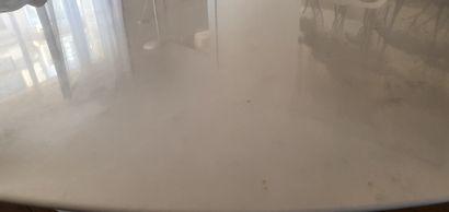 table design KNOLL version SAARINEN, le pied en fonte d'aluminium, le plateau ovale...