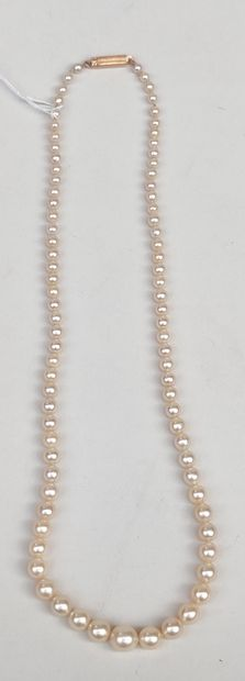 Collier de perles avec fermoir en or jaune...