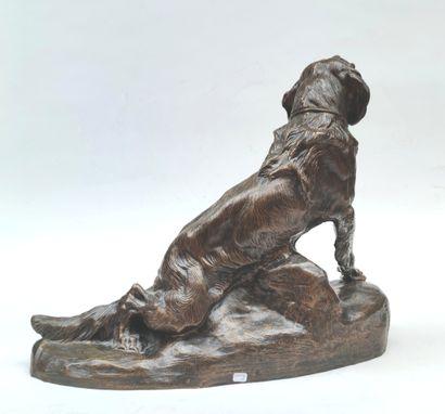 Thomas CARTIER (1879-1943) Epagneul assis Epreuve en bronze, fonte d'édition à patine...