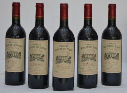 5 bout Chateau Moulin de Brion 1997 Medo...