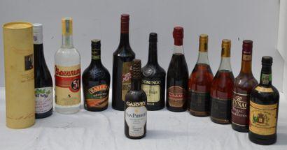 12 FLACONS ALCOOLS DIVERS BOUTEILLES ET DEMI...