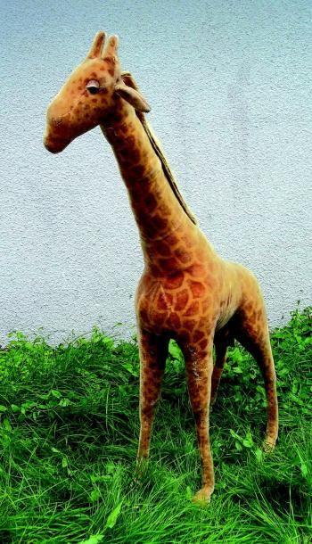 Extraordinaire grande girafe en peluche de...