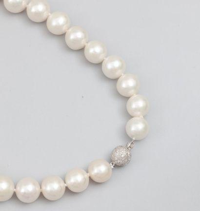 Collier de grosses perle de culture diamètre...
