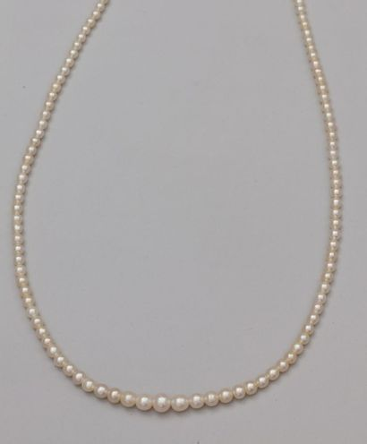 Collier de perles fines composé de 144 perles...