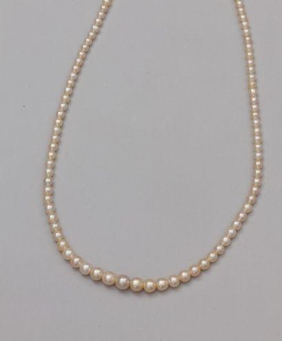 Collier de perles fines composé de 120 perles...