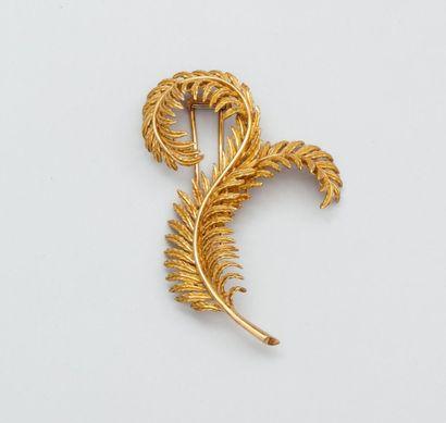 Broche clip plumes enroulées en or jaune...