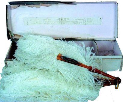 Eventail en plumes d'autruche avec manche...